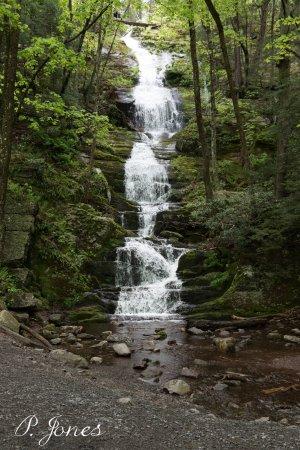 Layton, NJ: Buttermilk Falls