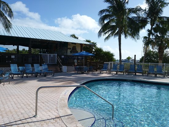 The Hammocks at Marathon: Pool and Barnacle Barneys tiki bar