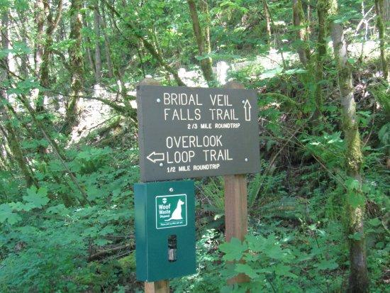 Corbett, Oregón: Options