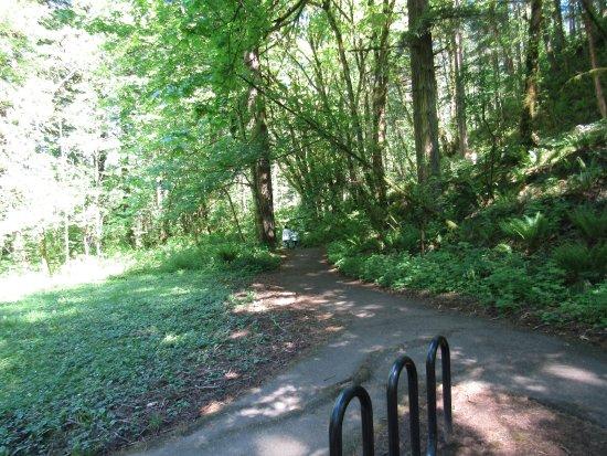 Corbett, OR: Trail