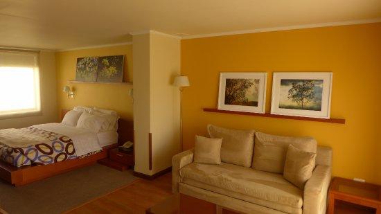 Hotel Boutique Confort Suites: Suite estandar