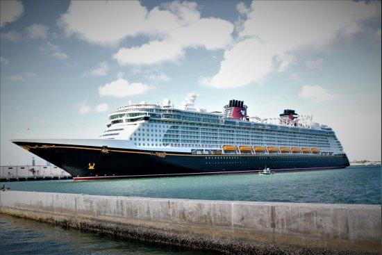 Tripadvisor Cruise Ships Reviews Fitbudha Com