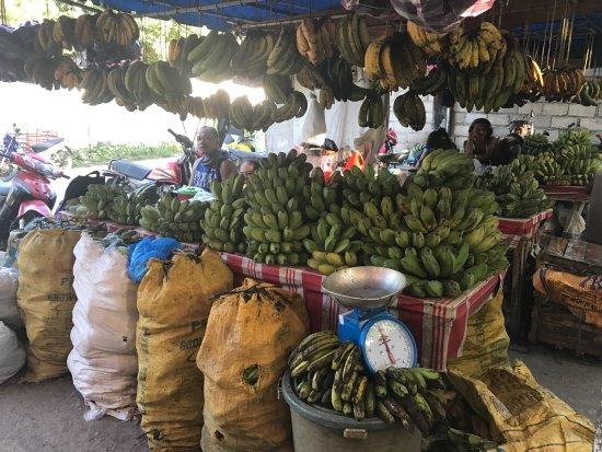 Villa Rosa: Trip to the local market