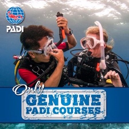 PADI No Fear Diving