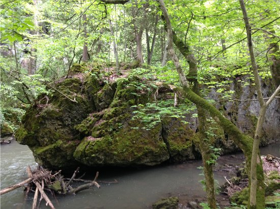 Yellow Springs, OH: steamboat rock