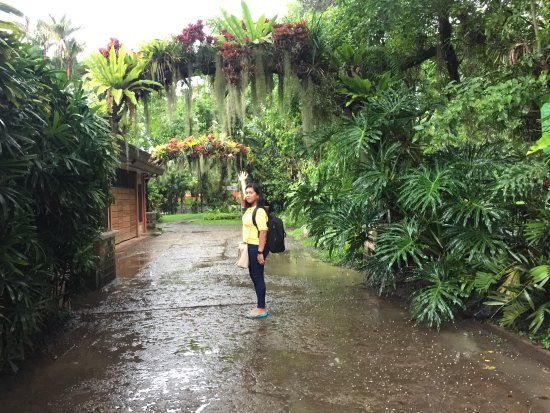 Malagos Garden Resort: My sweet wife guiding me back to the entrance.