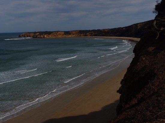 Surf Coast Walks - Day Tours: Clifftop to Pt Addis