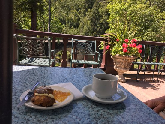 Garberville, Californië: Complimentary afternoon tea on the public terrace