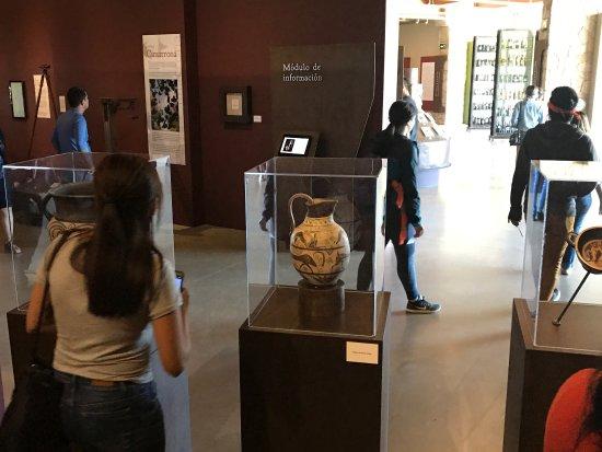 Valle de Guadalupe, Meksika: Museo de la vid y el vino
