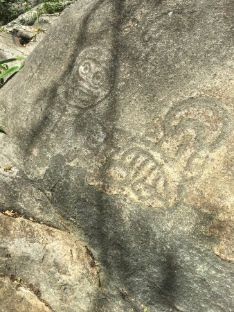 Reef Bay Trail: Petroglyphs at end of trail. Taino people sacred place.