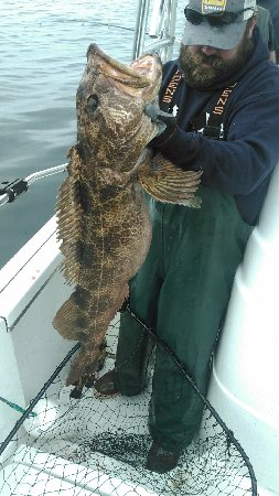 Trinidad, Califórnia: The Mighty Lingcod