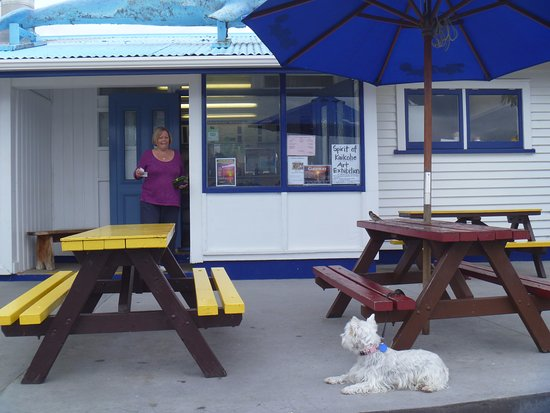 Opononi, New Zealand: Outdoor seating - just across the road to the beach and Hokianga Harbour. Little dog waiting anx