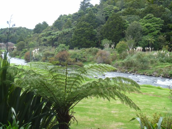 Dargaville, New Zealand: The fast-flowing Kaihu river virtually surrounds the Campsite