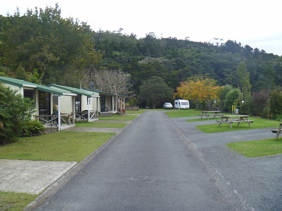 Dargaville, New Zealand: Cabins and powered sites, generous layout, choice of hard standing or grass for campervans