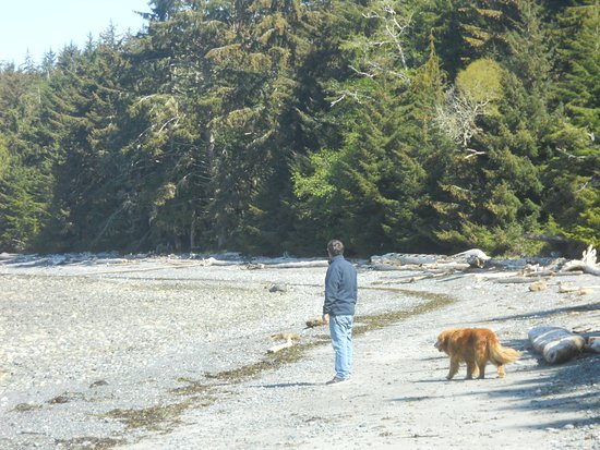 Malcolm Island, Canada: The Lighthouse Golden Retriever accompanied us on our walk.