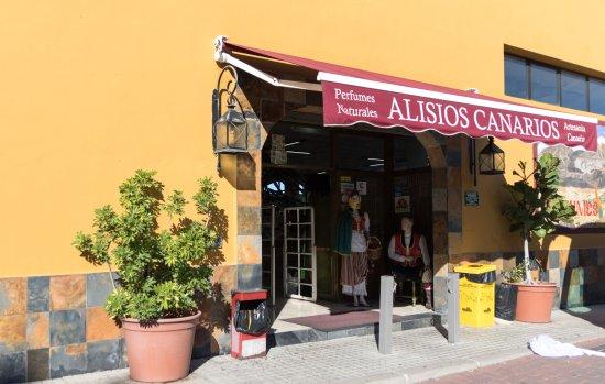 Alisios Canarios