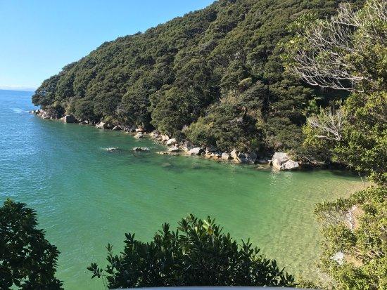 Abel Tasman National Park, Yeni Zelanda: photo1.jpg