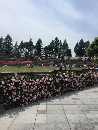 Itami, Japón: photo6.jpg