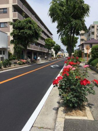 Itami, Japón: photo7.jpg