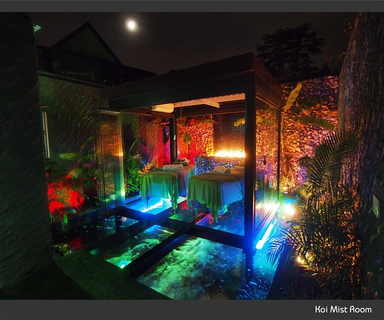 Randburg, South Africa: The Fusionista Koi Mist Room