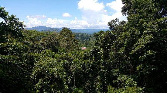Tamparuli, Malezja: photo0.jpg
