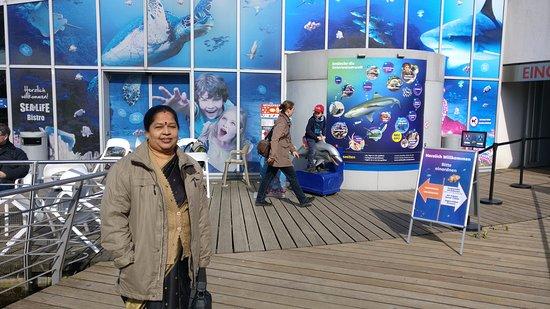 SEA LIFE Hannover: The entrance