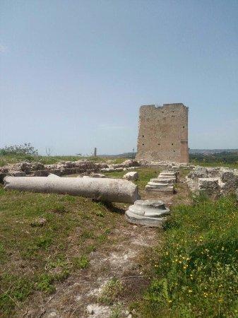 Mileto, Italia: Ecco parte dei resti della famosa abbazia di Ruggero il Normanno