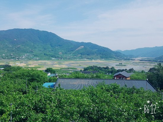 Hadong-gun, South Korea: B612_20170520_160155_large.jpg