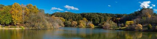 Greater Adelaide, Australien: Mt Lofty - Copy(1)_large.jpg