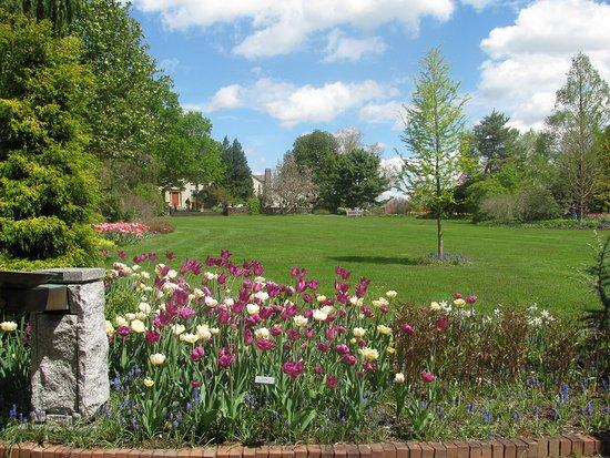 Boylston, MA: Tower Hill Garden 1