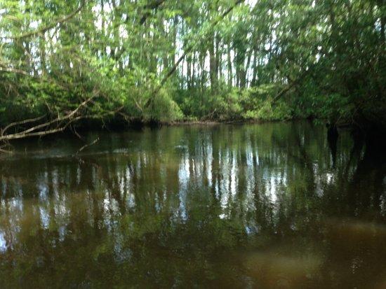 Aiken, SC: river