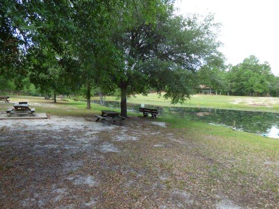 Aiken, SC: pond