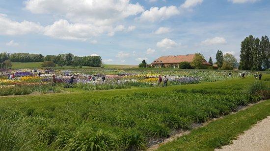 Les Jardins du Château de Vullierens