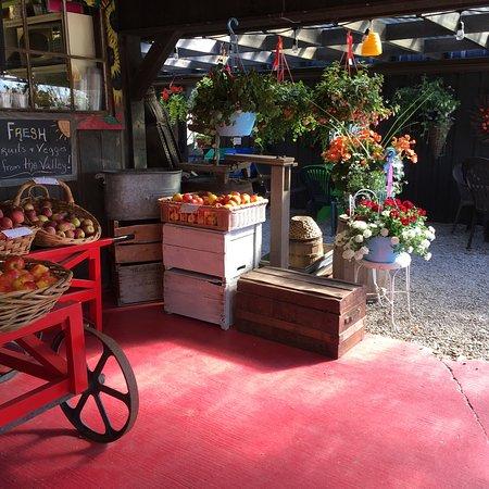 Jo-Ann's Deli Market & Bake Shop: photo1.jpg