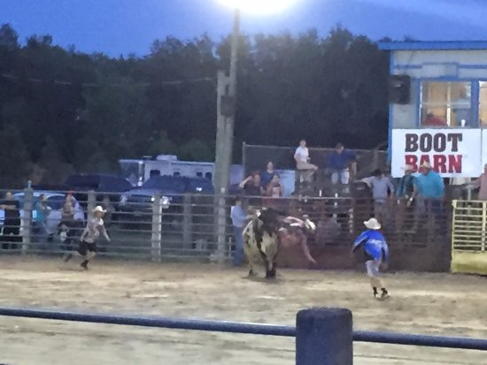 The Kissimmee Sports Arena Rodeo: rodeo
