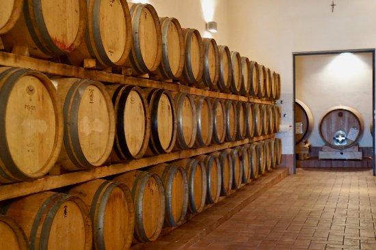 Radda in Chianti, Italy: Wine is stored in French oak casks.