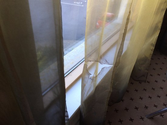 Athlone Springs Hotel: Net curtain in bedroom shows large hole but many smaller holes were evident.
