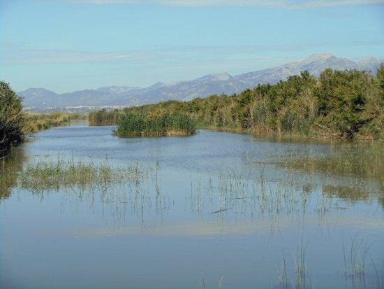 Parque natural s'Albufera de Mallorca: lovely views