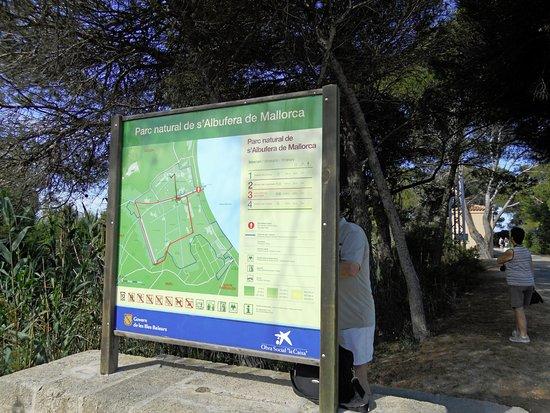 Parque natural s'Albufera de Mallorca: The Parc information board