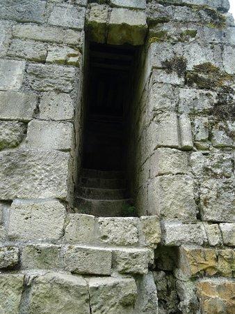 Montfaucon d'Argonne, France : Ruines de la Collégiale Saint-Germain