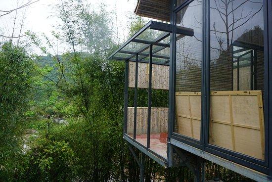 CTN Garden Hotel : Garden view