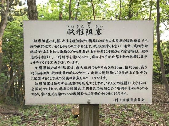 Obasawa Castle