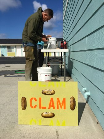 Ocean Shores, WA: Clam Cleaning Station