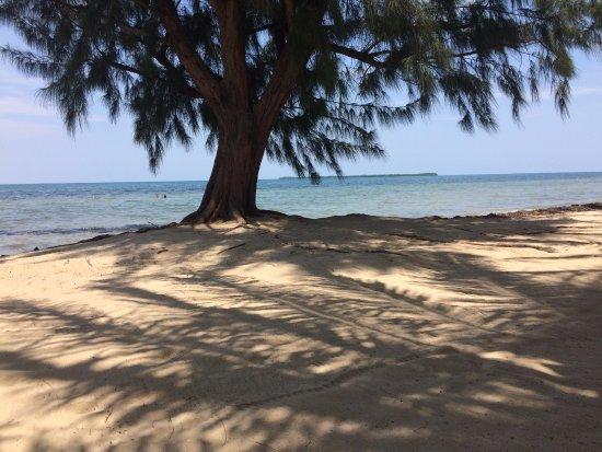 Maya Beach Hotel صورة