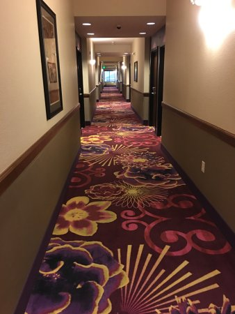 Burlington, CO: Nice carpet in hallway