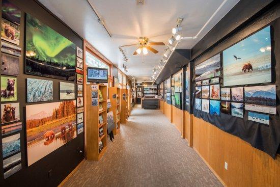 BearHead Photography Gallery