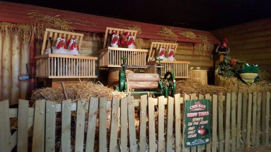 Reedham, UK: Chicken show