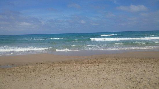 Playa de San Juan: IMG-20170510-WA0042_large.jpg