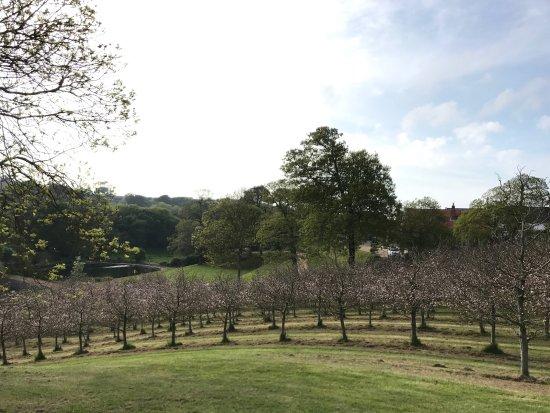 Castel, UK: Stunning scenery