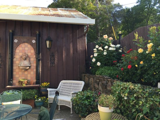 Sonora, CA: Rose garden on the small patio